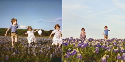 Blue Bonnets in Bloom with sabrina bean photography